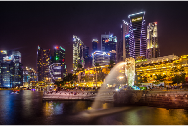 Know your Singapore Custom Regulation